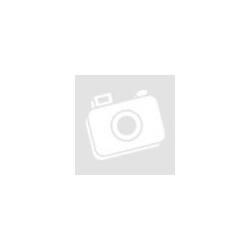 LED lámpa univerzális adapterrel és töltővel