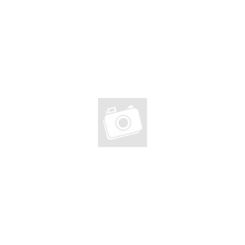 PowerPlus sárga kompresszor 1100W, olajmentes + 11 db tartozék POWX1706
